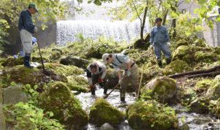 小武川の人口産卵河川清掃