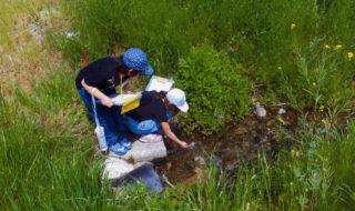 金川から水を採取する児童_海プロ2017