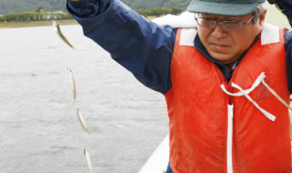 河口湖でワカサギ試し釣り-61