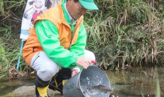 アマゴの親魚を放流-70