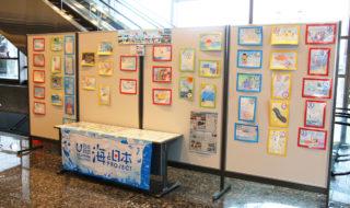「海かるた」原画と製品を展示-1
